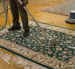 Professional Area Rug Cleaning Services In Norfolk And Virginia Beach Va